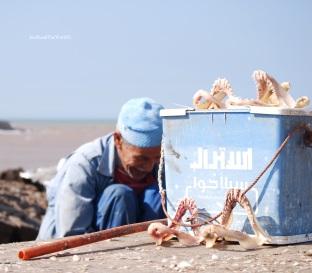 Pescatore ad Essaouira, Marocco.