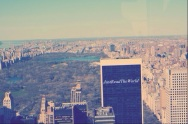 Central Park dall' alto del Top of The Rock.